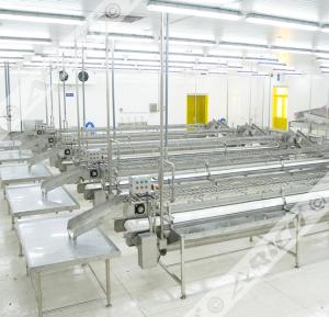 Arico-Fish-Processing-Solution
