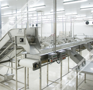 Arico-Fish-Processing-Line